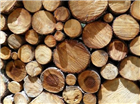 Supply & Sale of Seasoned and Un-Seasoned Logs